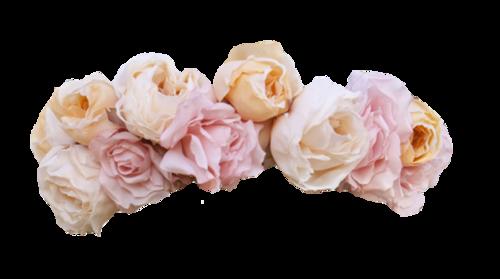 pastel pink flowercrown