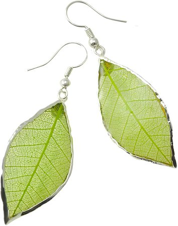 Amazon.com: Rubber Tree Leaf Earrings with Silver French Hooks - Gift Boxed (Green): Clothing