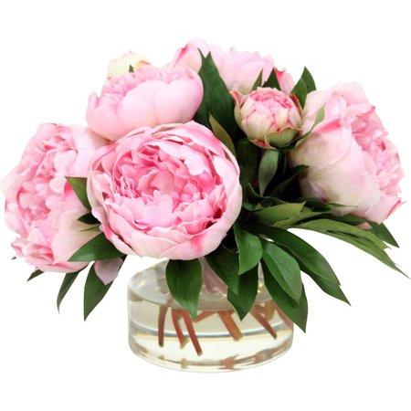 Flowers Peonies Vase