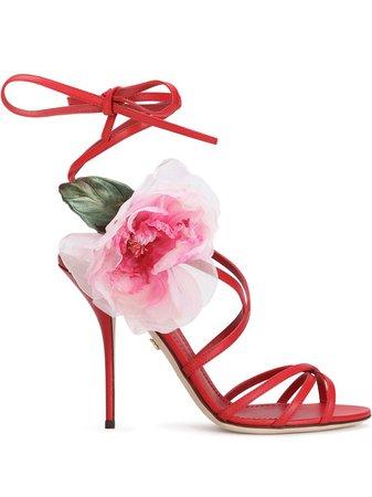 Dolce & Gabbana Sandales à Fleurs - Farfetch