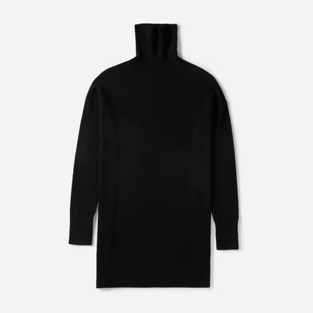 Women's Cashmere Turtleneck Dress | Everlane