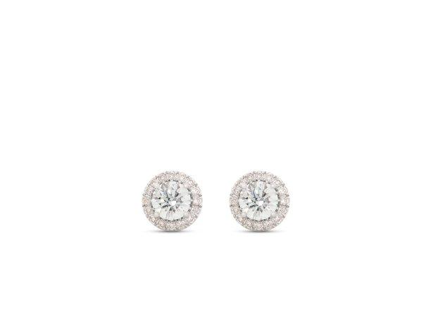 Halo Earrings in White | Lab Grown Diamonds – Lightbox Jewelry