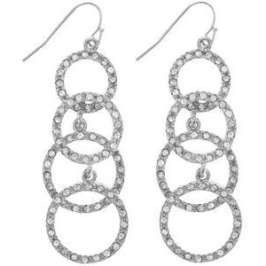 Silver Dangling Earrings PNG