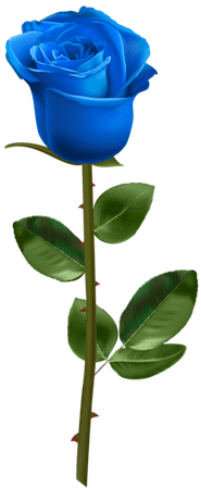 Blue Rose with Stem Transparent Image​ | Gallery Yopriceville - High-Quality Images and Transparent PNG Free Clipart