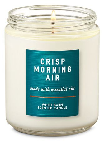 Crisp Morning Air Single Wick Candle | Bath & Body Works