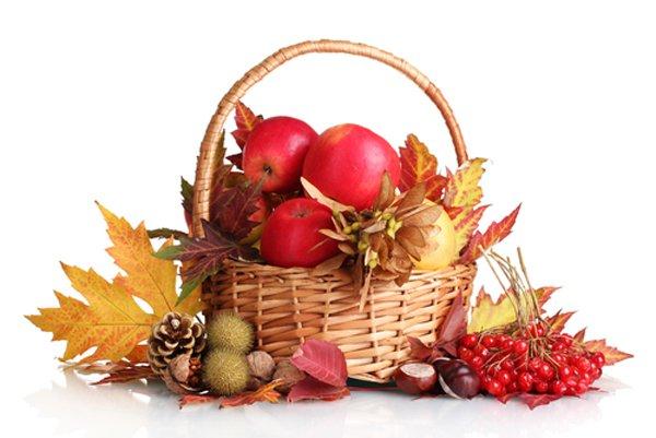 thanksgiving basket thing - Google Search