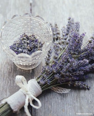 Pinterest: @CoffeeQueen4 Thank you xoxo | Lavender decor, Lavender crafts, Lavender flowers