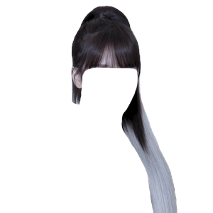 Black and White Hair Ponytail PNG