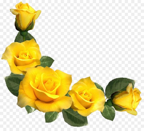 Yellow Rose Clipart (Icon Supplies)