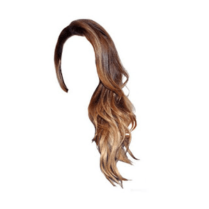 Brown Hair with Highlights PNG