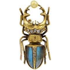 Scarab brooch