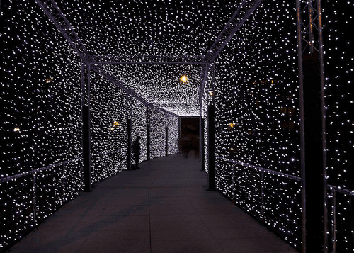 prom lights