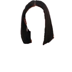 short dark brown / black hair png