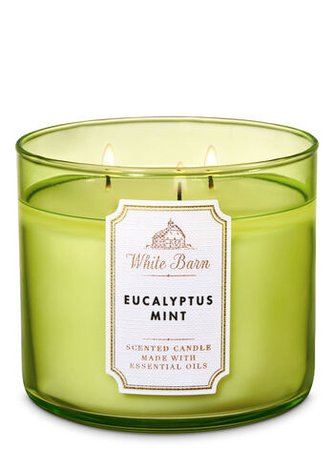 Bath and body works eucalyptus mint candle