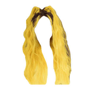 Yellow Hair Space Buns PNG