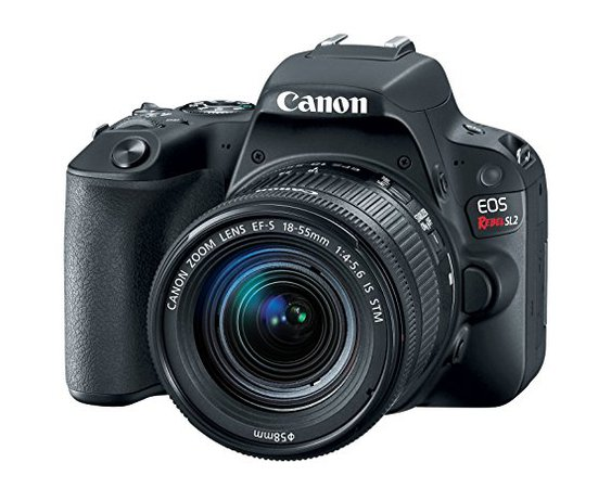 Canon EOS Rebel SL2 DSLR Camera with EF-S 18-55mm STM Lens