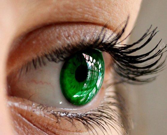 Green Eyes Color Scheme » Image » SchemeColor.com