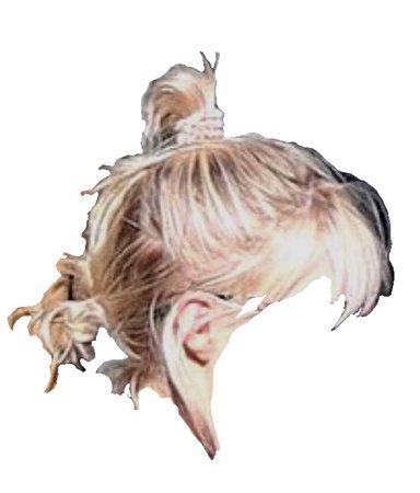 blonde bunhawk