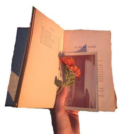 rose book png