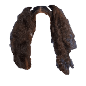 Curly Brown Hair PNG Pigtails