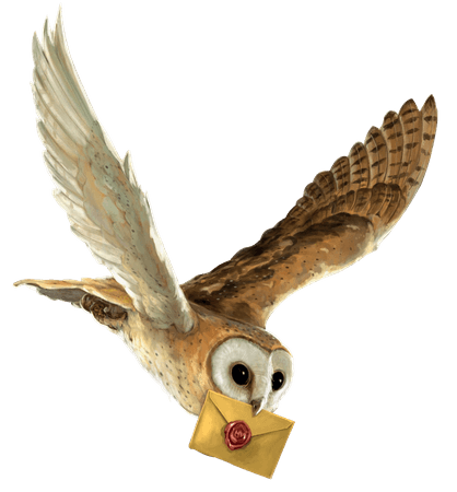 harry potter owl transparent