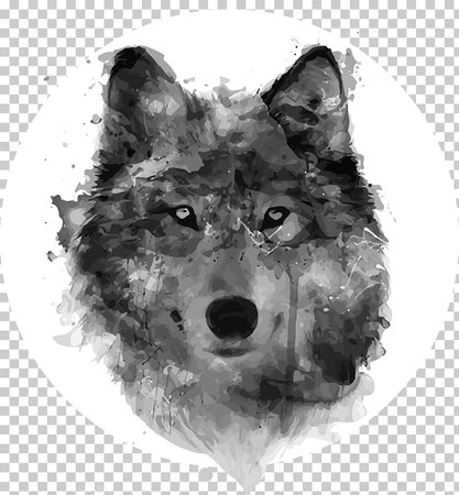 Gray wolf Watercolor painting Drawing Watercolour Flowers, painting PNG clipart   free cliparts   UIHere