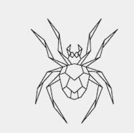 Spide Line Art Drawing (HASEUL)