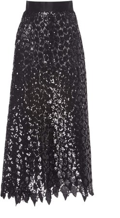 Semi-Sheer Embroidered Tulle Skirt