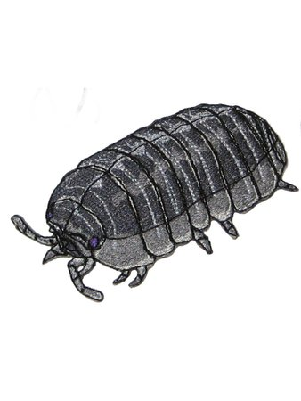 pill bug patch