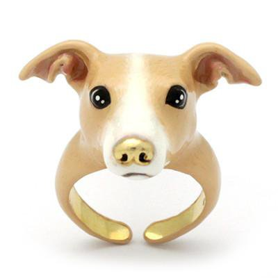 Onetwo Italian Greyhound Ring Fawn | DOGS | GOOD AFTER NINE