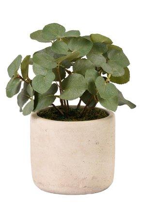 Bloomr Eucalyptus Planter Decoration | Nordstrom