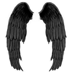 Black Costume Angel Wings