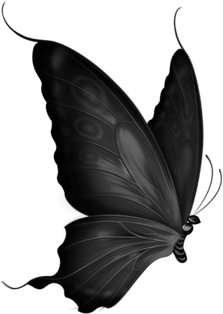 Animated Black Butterfly