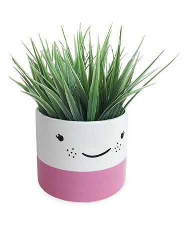 Blush Face Planter   Zulily