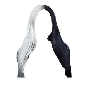 white & black hair png