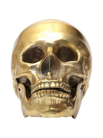 Seletti Wunderkrammer Human Skull - Farfetch