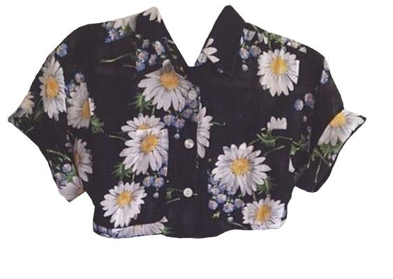 daisy button up