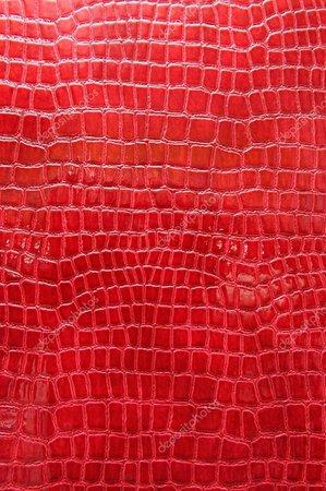 pelle di coccodrillo rosso — Foto Stock © just2shutter #28002075