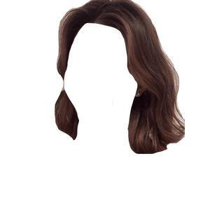 Short Brown Hair PNG