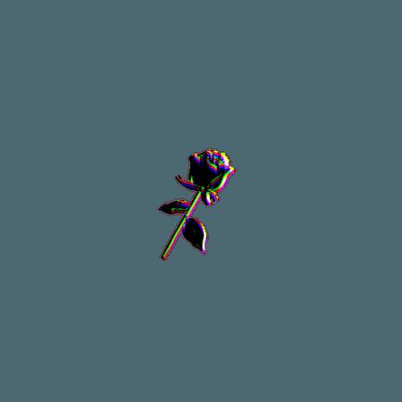flower glitch tumblr beautiful