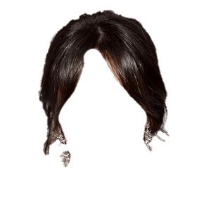 Dark Brown Hair BLACK Png Bun