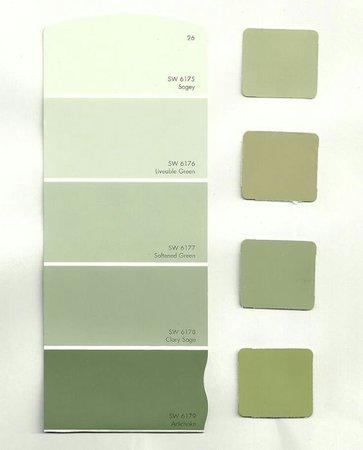 color scheme color palette green