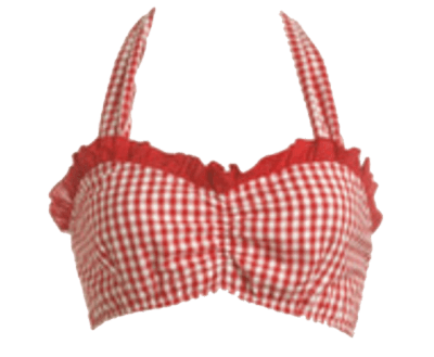 Red Gingham Halter top