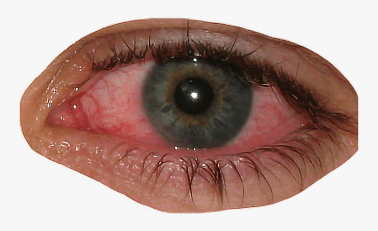 eyes aesthetic png - Google Search