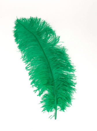 green feather - Google Search