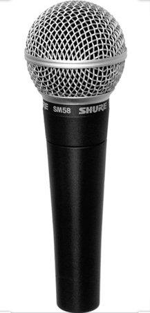 microphone 🎤