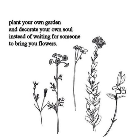 "Bohemian Quotes on Twitter: ""Plant your own garden 🌸 #bohemianquotes #quote… """
