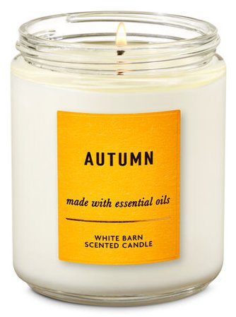 Autumn Single Wick Candle | Bath & Body Works
