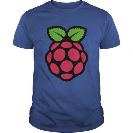 Raspberry Pi T Shirt | TeeShirt21