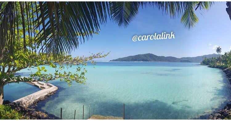 Carola's Image